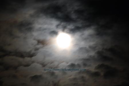 moonrise1web